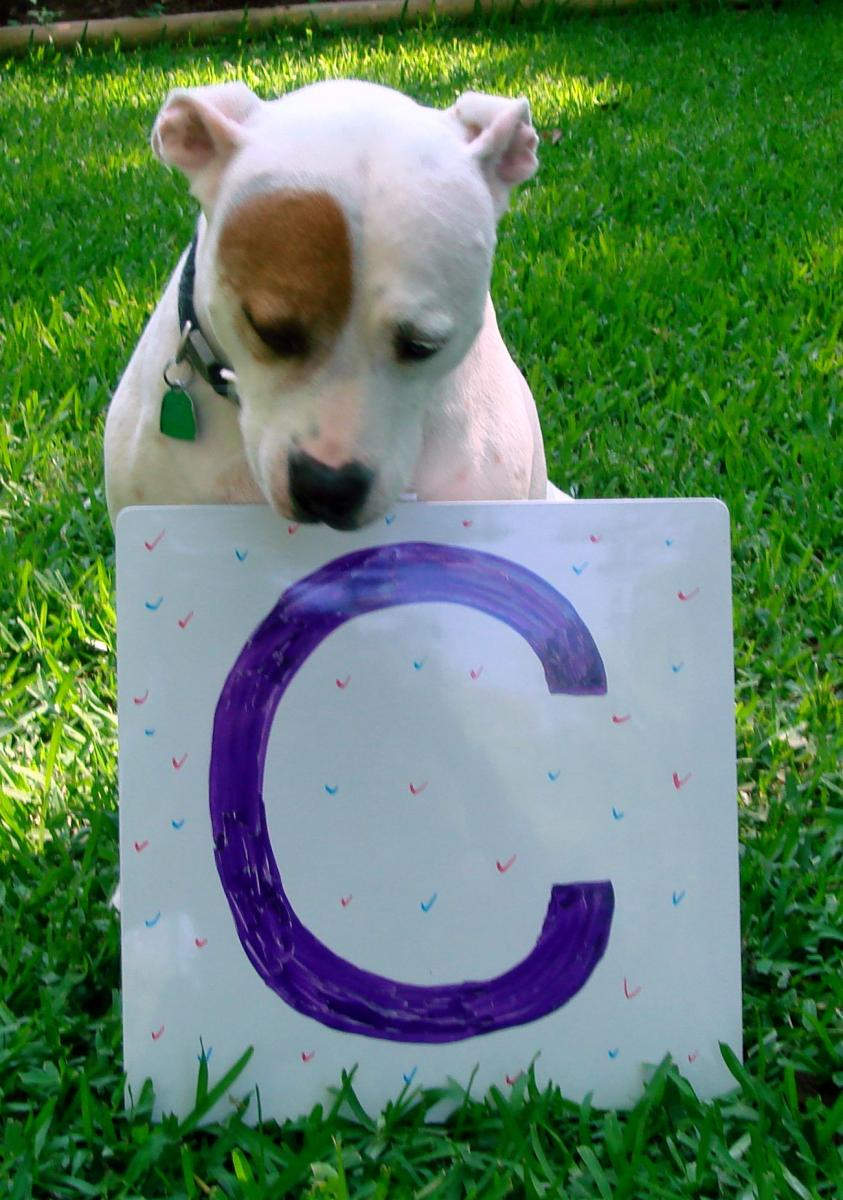 Chloe with the letter C