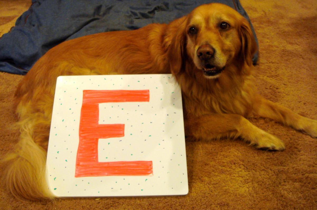 Lily with the letter E
