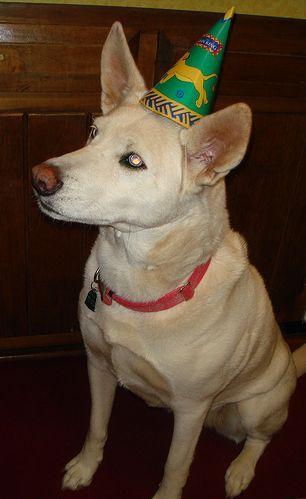 Freya waits for her birthday cake