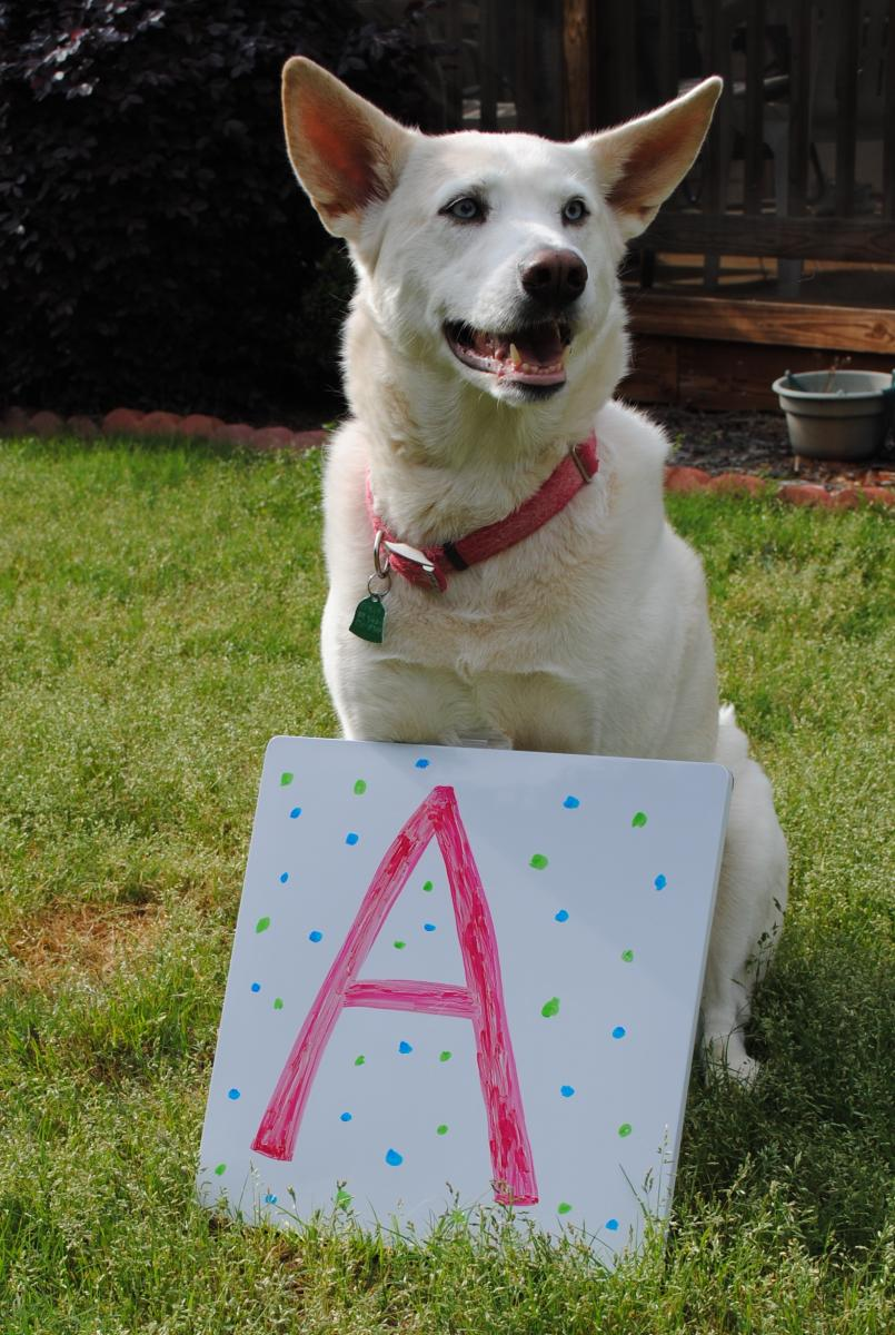 Freya with the letter A