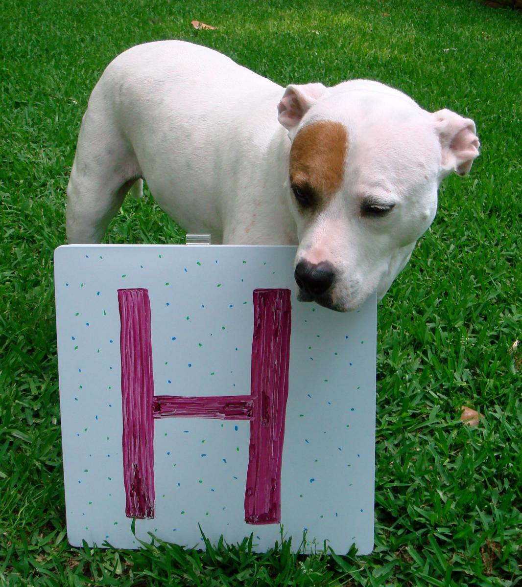 Chloe with the letter H