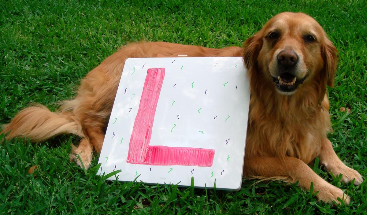 Lilly with the letter L