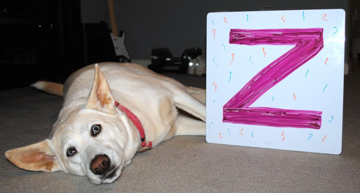 Freya with the letter Z